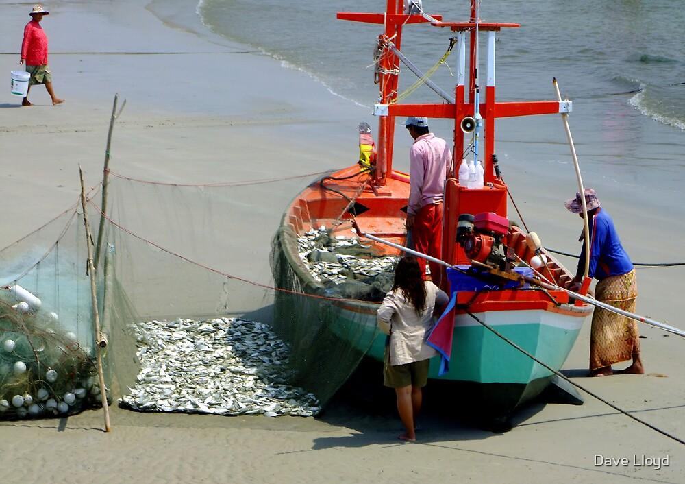 Fisher Folk ... by Dave Lloyd