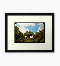 Tree of Gritty Life Framed Print