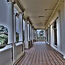 The Balcony by Cathryn Swanson