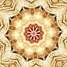 Kaleidoscope Abstract by Carla Jensen