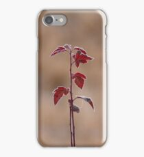 Straight Stalk iPhone Case/Skin