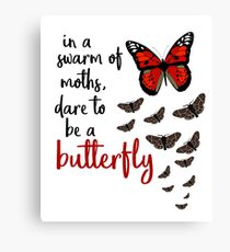 In a swarm of moths, dare to be a butterfly Canvas Print