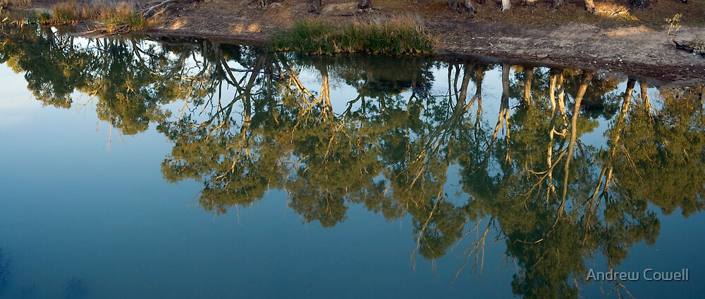 wimmera reflections by Andrew Cowell
