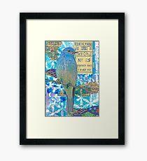 Mixed media collage bird blue jay Framed Print
