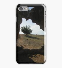 Tree at the Tombs iPhone Case/Skin