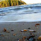 By the Beach by elasita