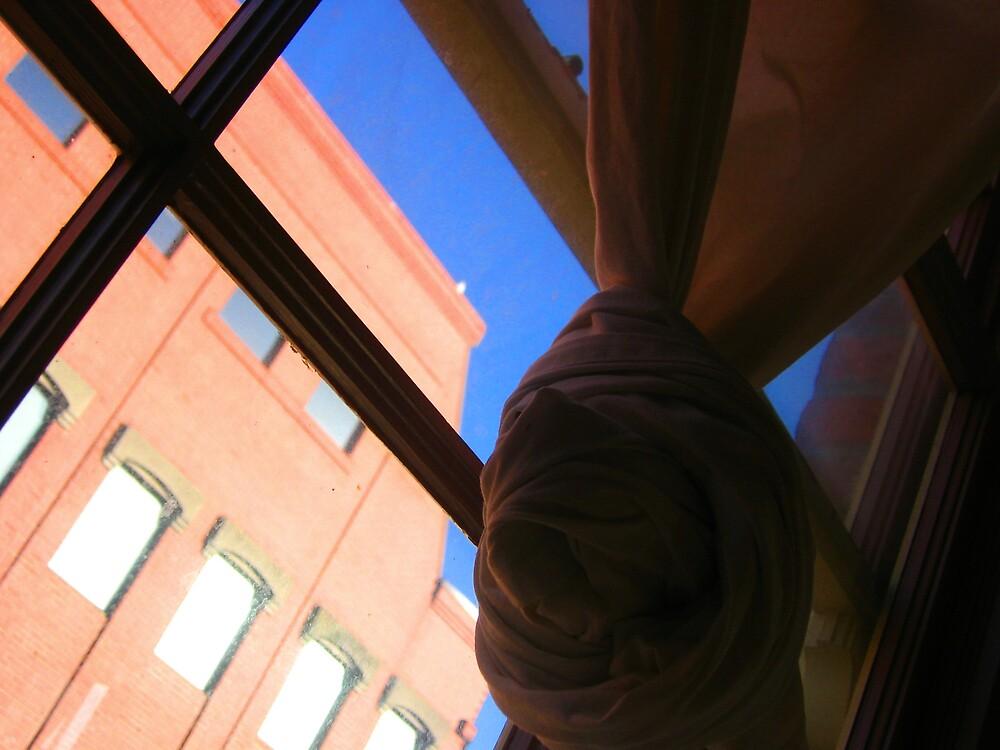 Window by Holls