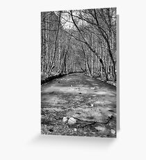 Frozen River - BW Greeting Card