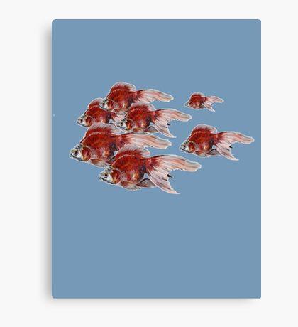 Eight Ryukin Goldfish Schooling Canvas Print