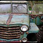 Range Rust by DavidROMAN