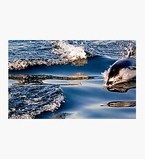 Gliding Through The Water Photographic Print