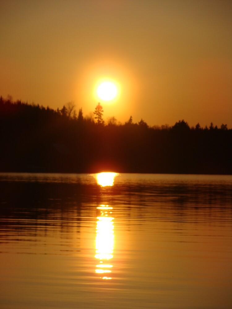 misty sunset by Jessica  Taylor-Cassan