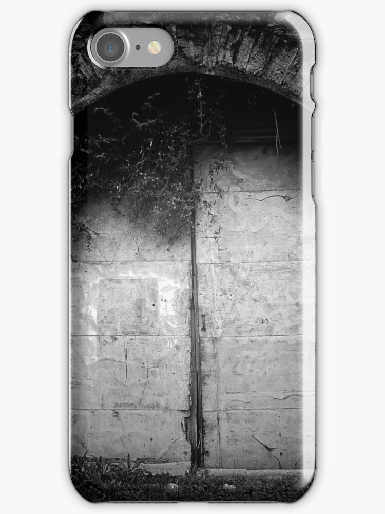 Doors to the Other Side by Trish Mistric