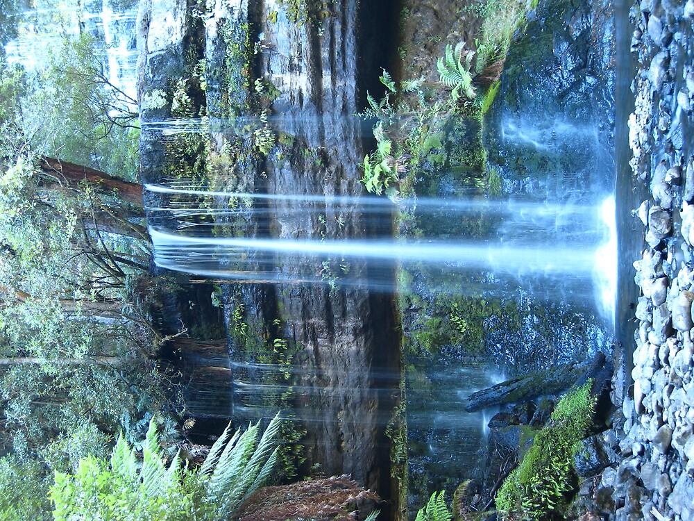 Russel Falls by wmolland
