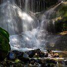Summer Waterfalls by Sharlene Rens