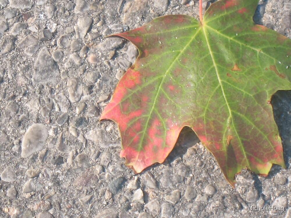 Colors Of Fall by NicholeHoag