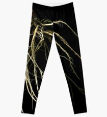 Red Cabbage root 5 Leggings