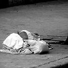 Lonely Sleep by Lea Hamilton