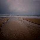 Rainy Cow Bay, near Cape Tribulation by Imi Koetz