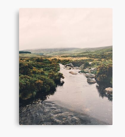 Irish Wanderings Metal Print