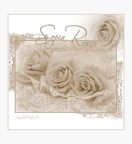 Three Sepia Roses  Photographic Print