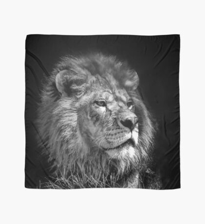 Proud Young Lion Scarf