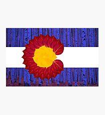 aspen tree Colorado flag Photographic Print