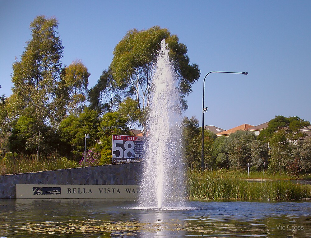 Water feature by Vic Cross