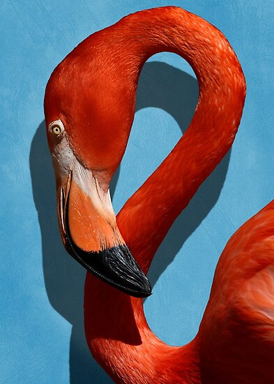 Studio Dalio - Orange Flamingo Profile on Blue Background Poster