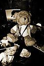 Teddy der Fotograf von Evita