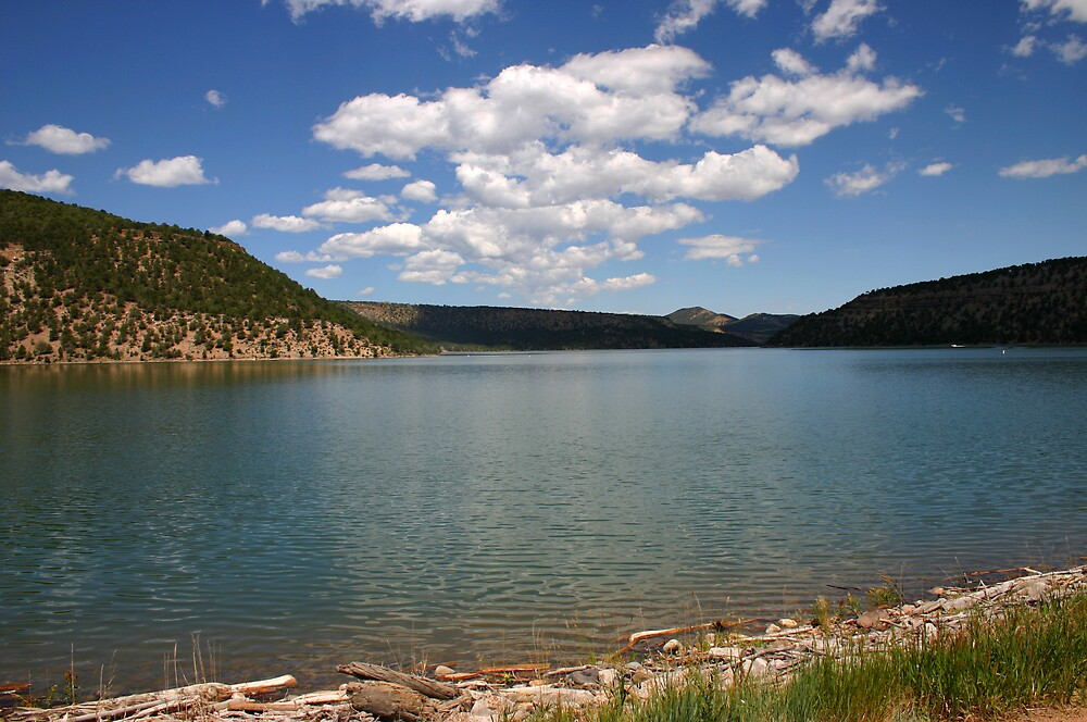 MONTANA LAKE by Patricia Montgomery