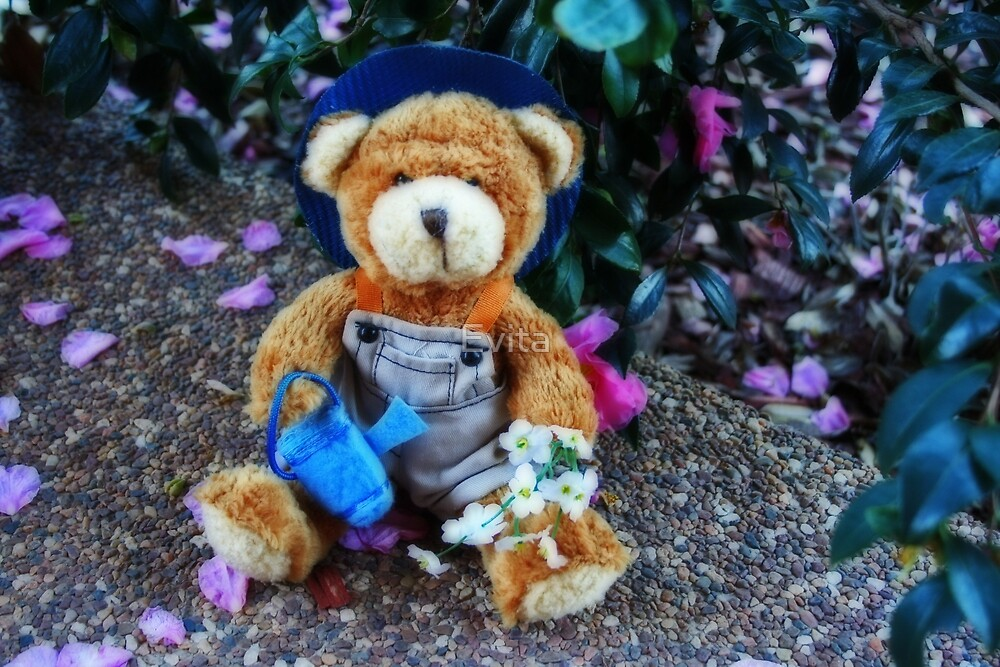 Teddy Gardener by Evita