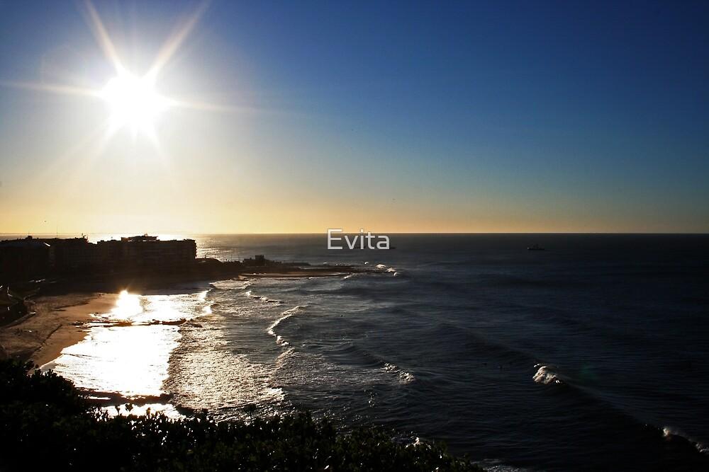 Newcastle by Evita