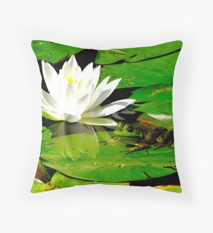 Basking in the reflection Throw Pillow