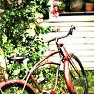 Provincetown Bike by Philip James Filia