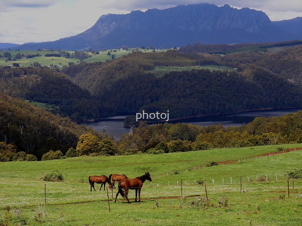 photoj Tasmania Sheffield Countryside by photoj