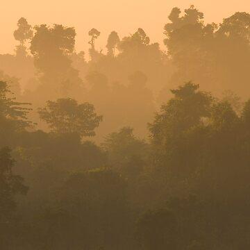 Dawn at Kinabatangan by jollence