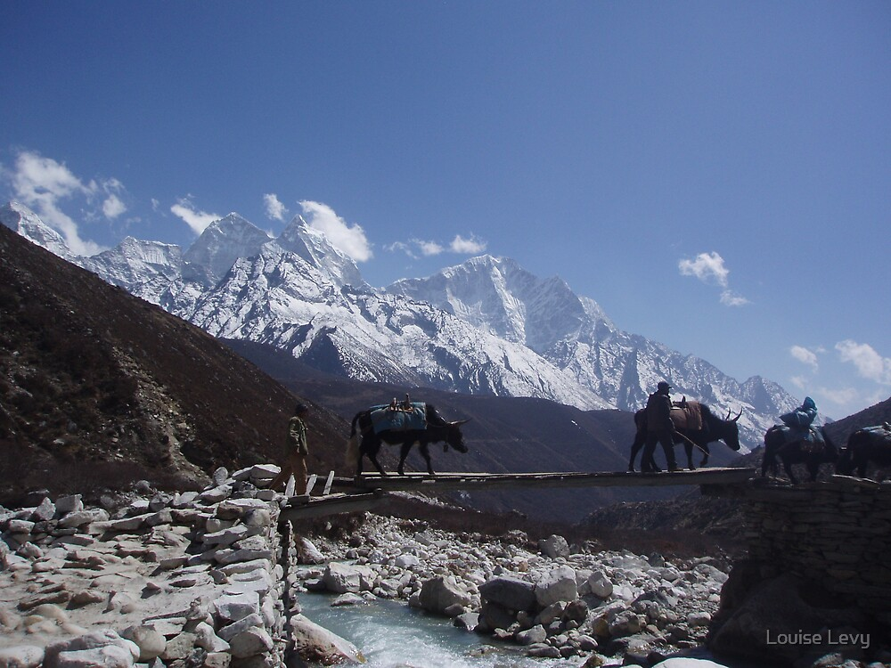 Yak's crossing by Louise Levy