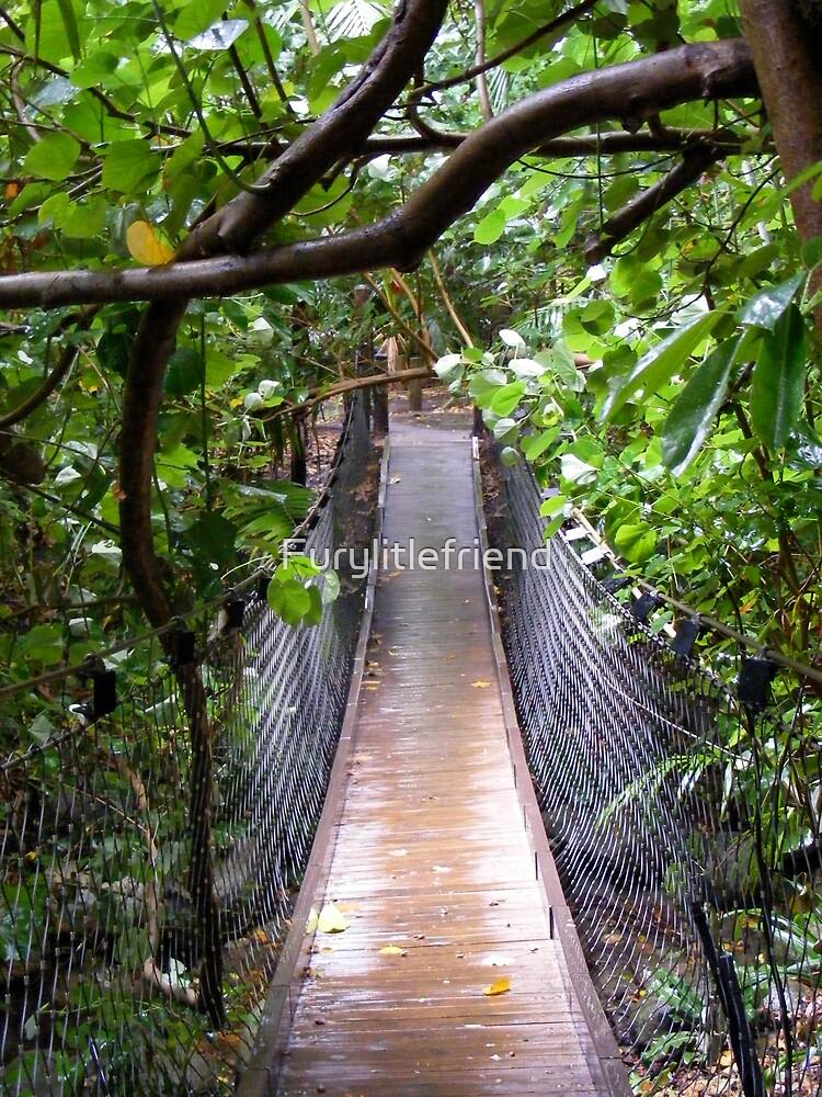 Jungle Bridge by Furylitlefriend