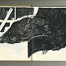 Autopsie du Noir - Autopsy of the black -  by Pascale Baud