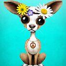 Netter Chihuahua-Welpen-Hippie von jeff bartels