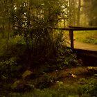 Bridge No 1 by Rosalie Dale