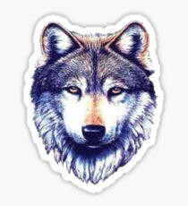 Wolf Drawing Sticker