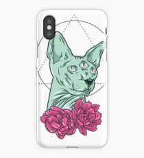 All Seeing Kitty iPhone Case/Skin