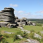 Combestone Tor #7 by kalaryder