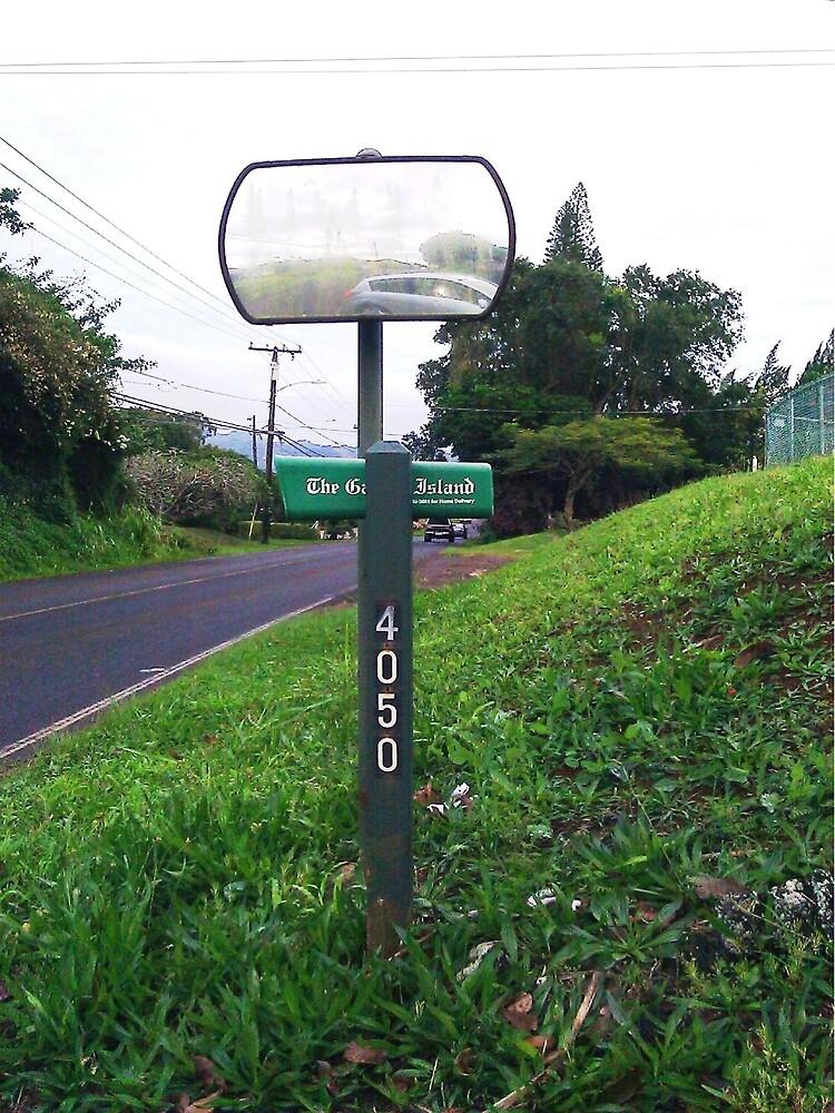 4050 East ... In ... Kauai by WhiteDove Studio kj gordon