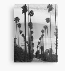 Vintage Black & White California Palm Trees Photo Metal Print