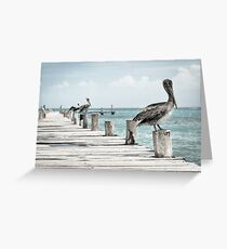 Pelicans On The Port Greeting Card