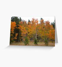 Autunm Bright Greeting Card
