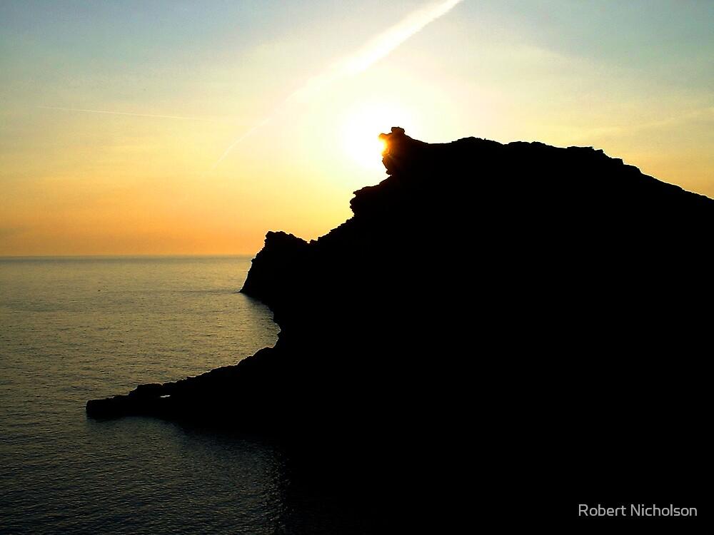 Boscastle Silhouette by Robert Nicholson